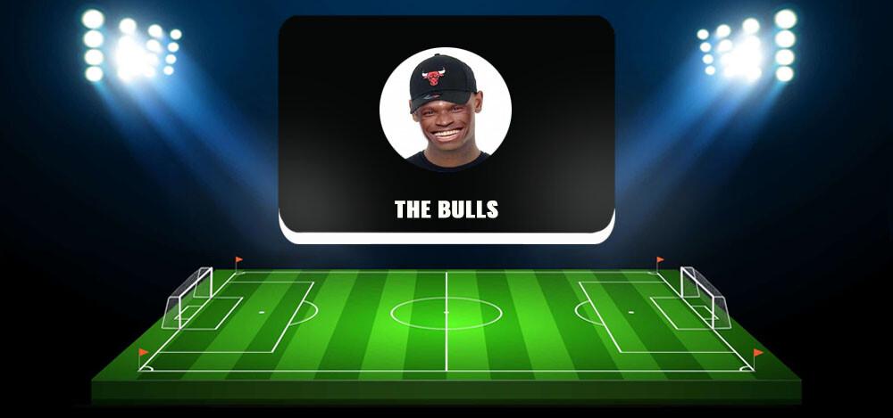 Проект по майнингу криптовалют The Bull's: отзывы. Анализ деятельности команды «У Быка»