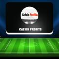 Calvin Profits — отзывы о проекте, обзор и анализ сайта