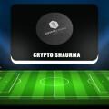 Телеграм-канал Crypto Shaurma — возможно ли получить прибыль?
