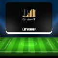 Обзор проекта Литвинова о криптовалюте. Отзывы о телеграм-канале Litvinoff
