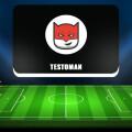 Стратегии ставок на спорт на платформе Testoman: обзор деятельности. Отзывы о «Тестоман»