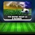 Что означает тотал 4,5 в футболе и как правильно сделать ставки