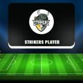 Strikers Player  – обзор телеграм-канала и отзывы клиентов