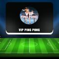 VIP PING PONG  — отзывы о проекте, обзор и анализ канала в «Телеграме»