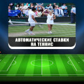 Лучшие боты для автоматических ставок на теннис