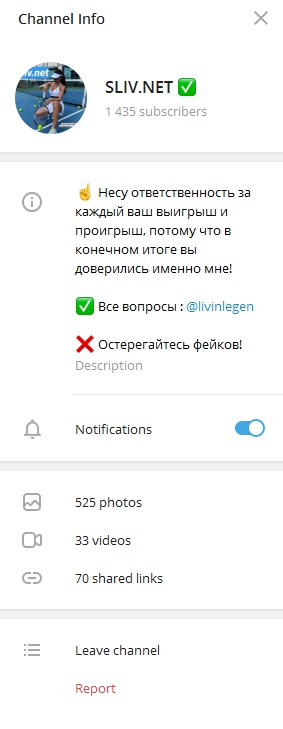 SLIV.NET - информация о канале