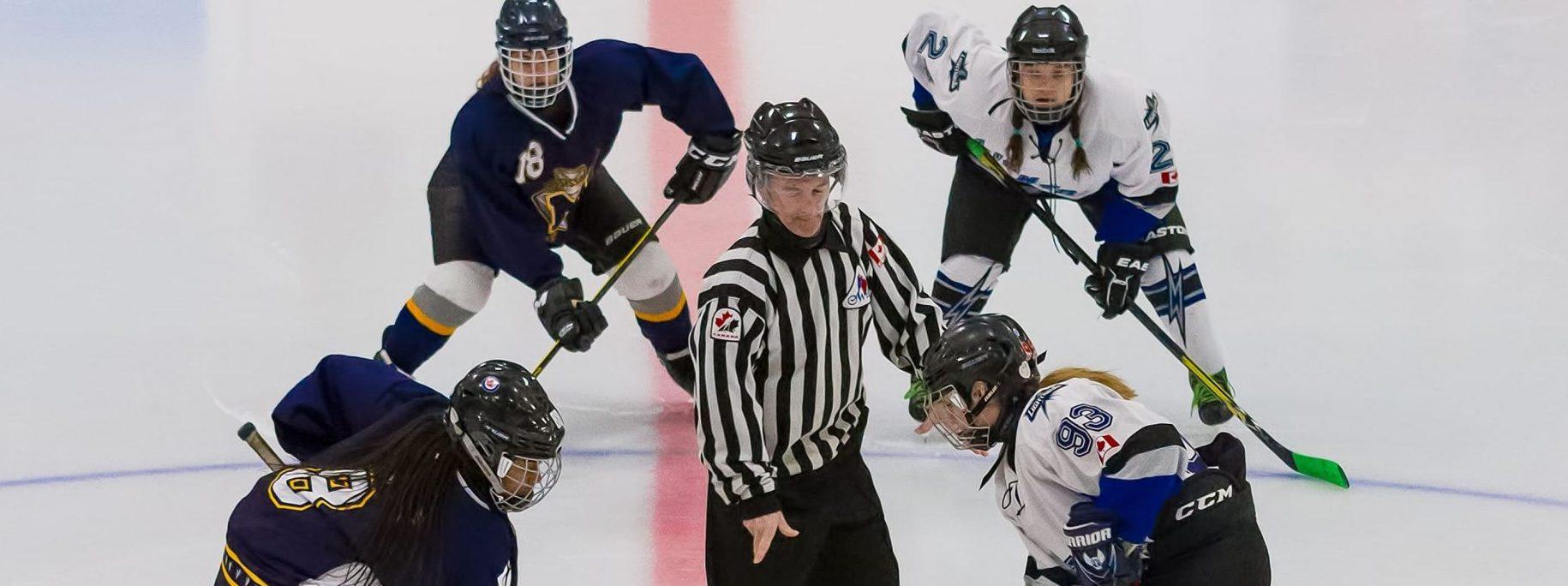 Методика «Антимартингейл» в ставках на хоккей
