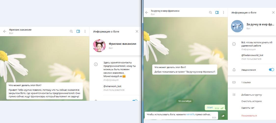 2 бота, связанных с фриланс-вакансиями в России