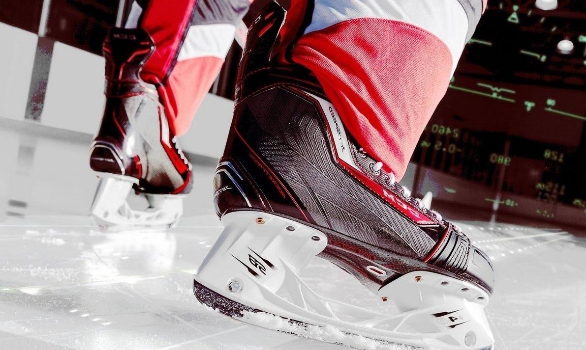 Боты для хоккея