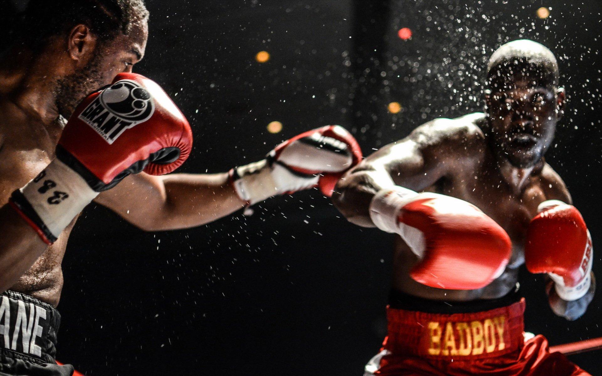 Весовая категория бойцов