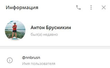 Владелец канала - Антон Брусникин