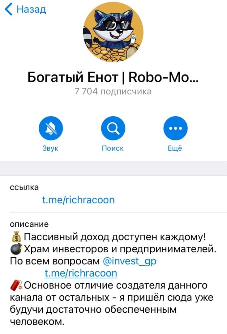 Канал «Богатый Енот   Robo-Money»