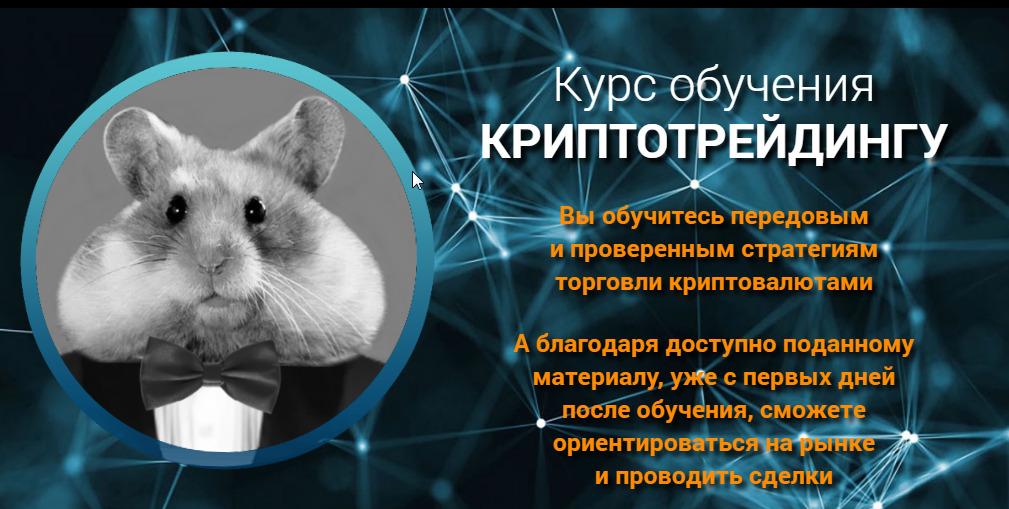 Обучающий курс Crypto Hamster