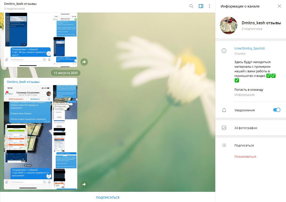 Отзывы представлены скриншотами переписок