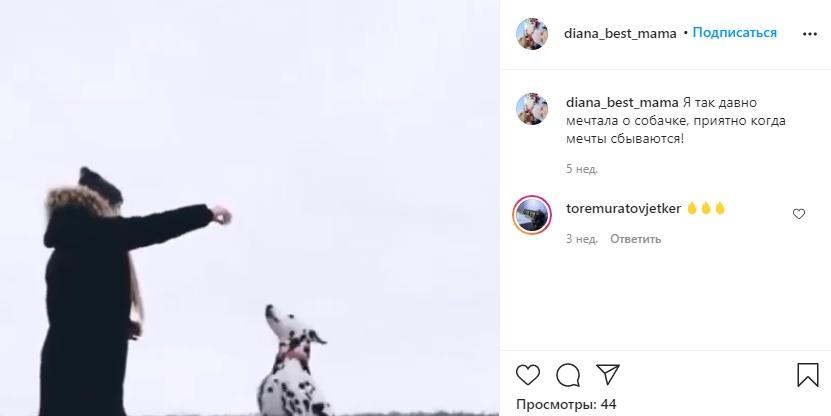 Каппер выложила видеоролик со своей собакой