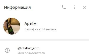 ЛС Артема