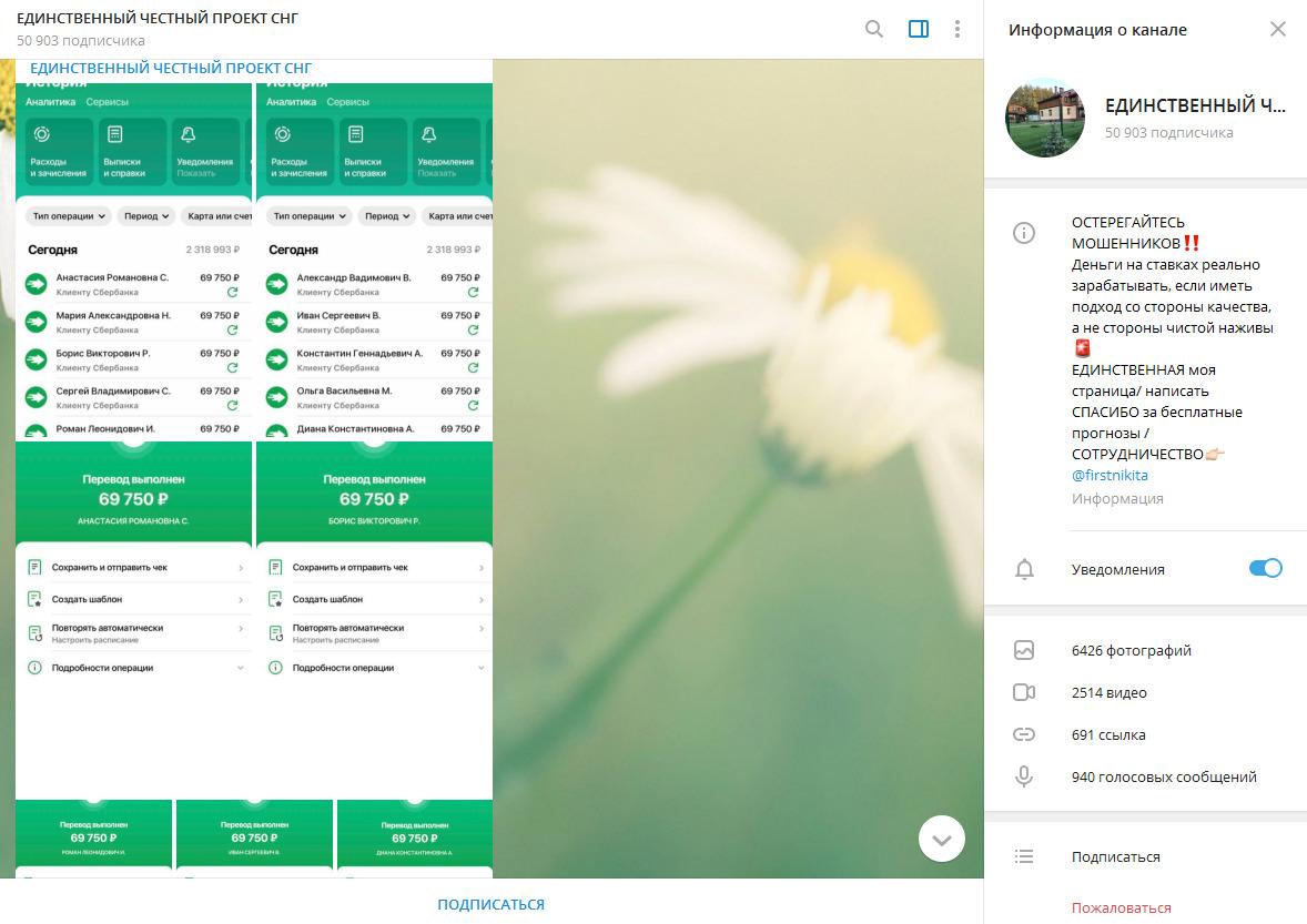 Скриншоты выплат